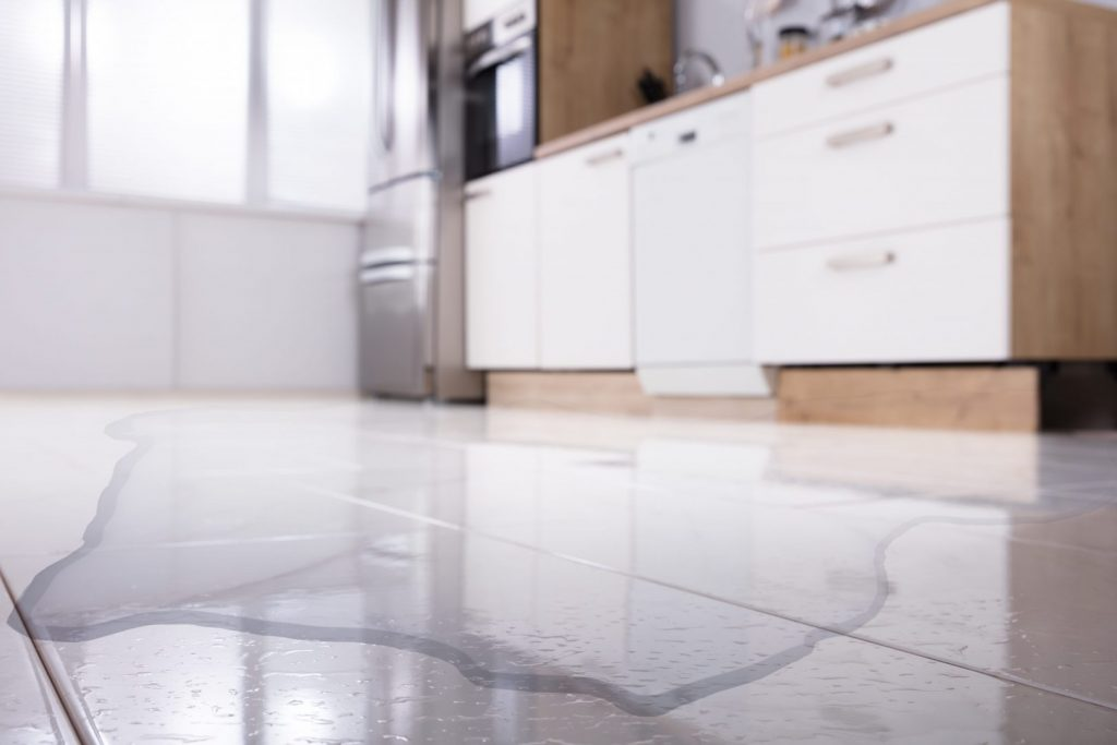 It's important to fix dishwasher leaks as soon as they happen.