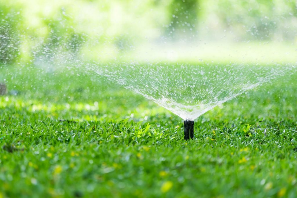 Summer plumbing projects should include proper lawn maintenance like sprinkler systems